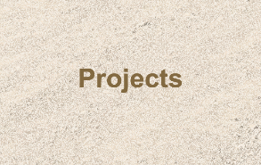 See Our Project Work